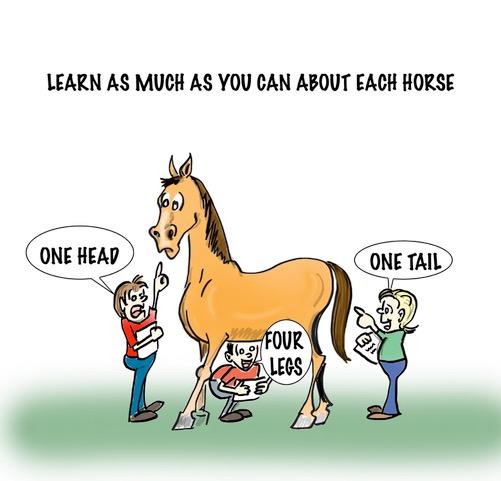 Horse Nanny Checklist